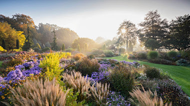 Fotos de bellos jardines premiadas en IGPOTY N.12 Beautiful Gardens