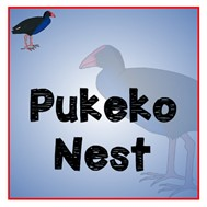 Pukeko NEST - New Entrants