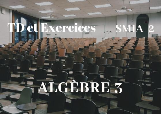 TD et Exercices corrigés d'Algèbre 3 SMIA Semestre S2 PDF