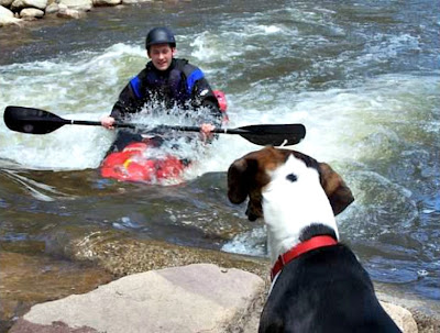 Kayaking Boulder Creek with your dog