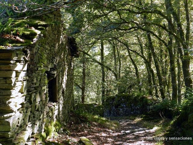 Aldea abandonada Ancadeira, Santa Eulalia de Oscos