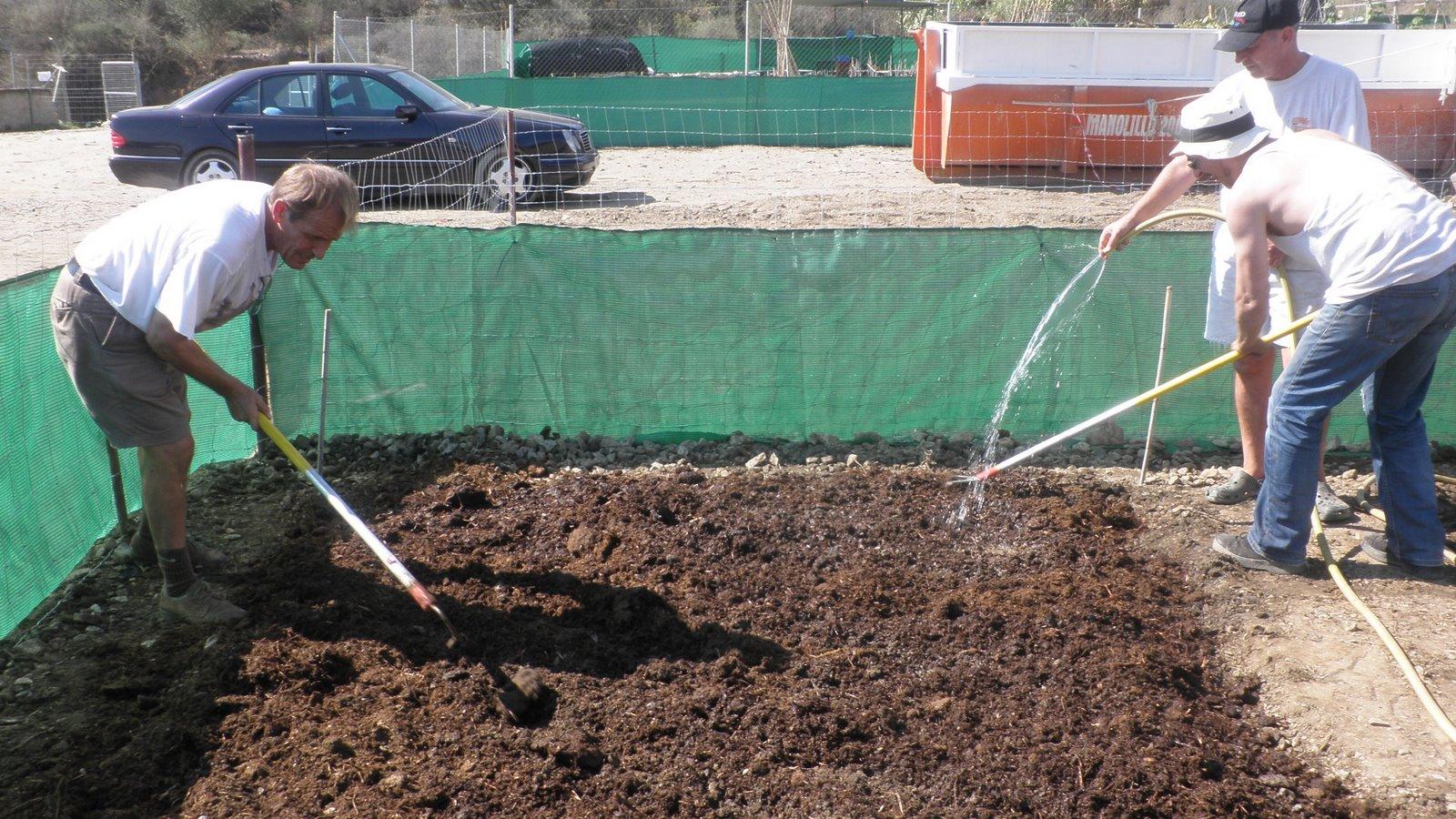 Huerto en casa siembra de berenjena obreros docentes - Preparacion de la tierra para sembrar ...