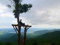 """Menara Pohon Bukit Gembes"" Yang Bakal Bikin kamu Ngak Sabar Ke Munjungan"