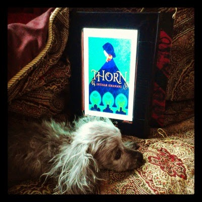 Murchie, his facial hair clipped close to the skin, flops before an e-reader with his head resting on his shorn paws. The e-reader displays the cover for Thorn. Said cover features a simple, bold illustration of a pale-skinned redhaired woman in a voluminous dark blue cloak. She's positioned above three Moorish arches through which we see the silhouette of a domed and turreted city. The background is bright, textured green.