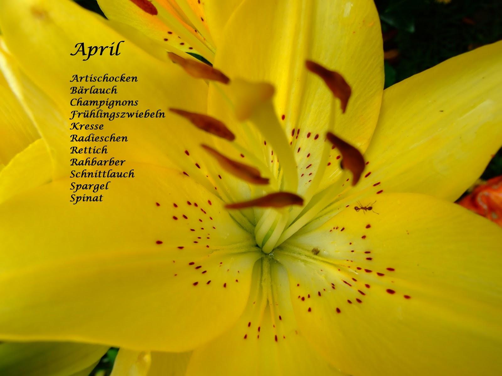 Schön Deko Frühling Schema