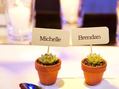 Mini succulent wedding favours with table placeholders.
