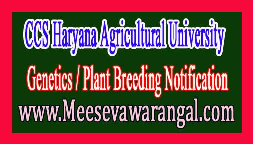 CCS Haryana Agricultural University Senior Research Fellow (SRF) in Genetics / Plant Breeding Notification