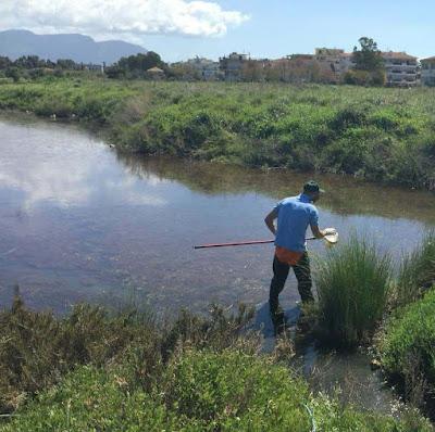Εγκαίρως και φέτος οι ψεκασμοί του Δήμου Αγρινίου για τα κουνούπια ...