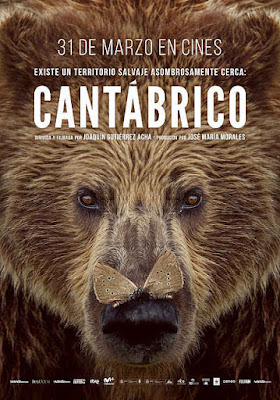 Cartel oficial español: Cantábrico. Los dominios del oso pardo (2016)