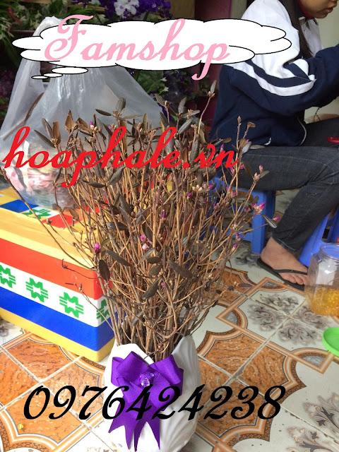 Cua hang hoa do quyen ngu dong tai Gia Lam
