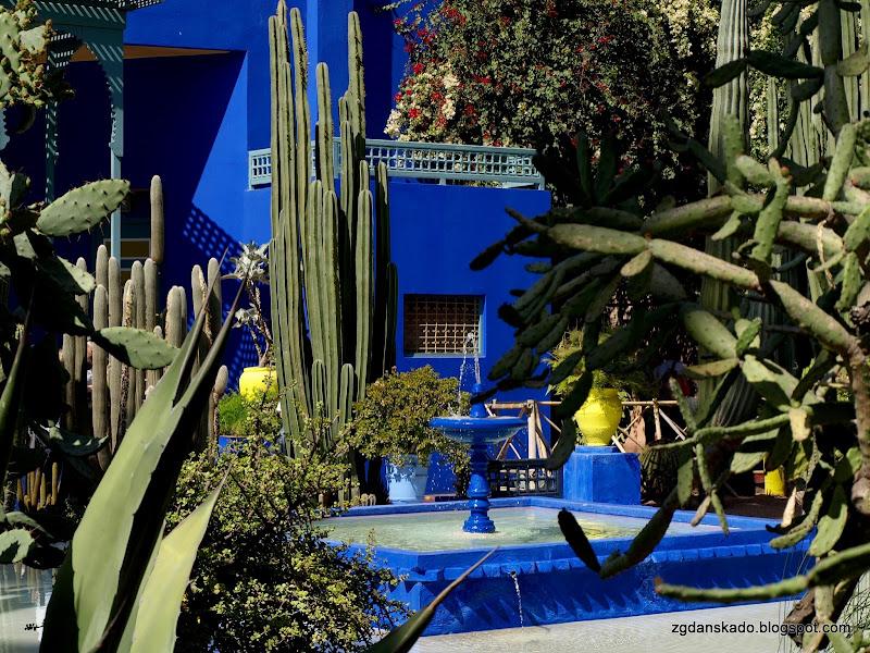 Marrakesz - Ogrody Majorelle