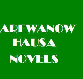 Captain Ahmad Junaid Complete Hausa Novel - Arewa Now
