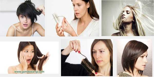 Merawat Rambut Kering dan Rontok