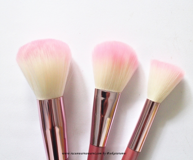 Detail Powder Brush Pink Set