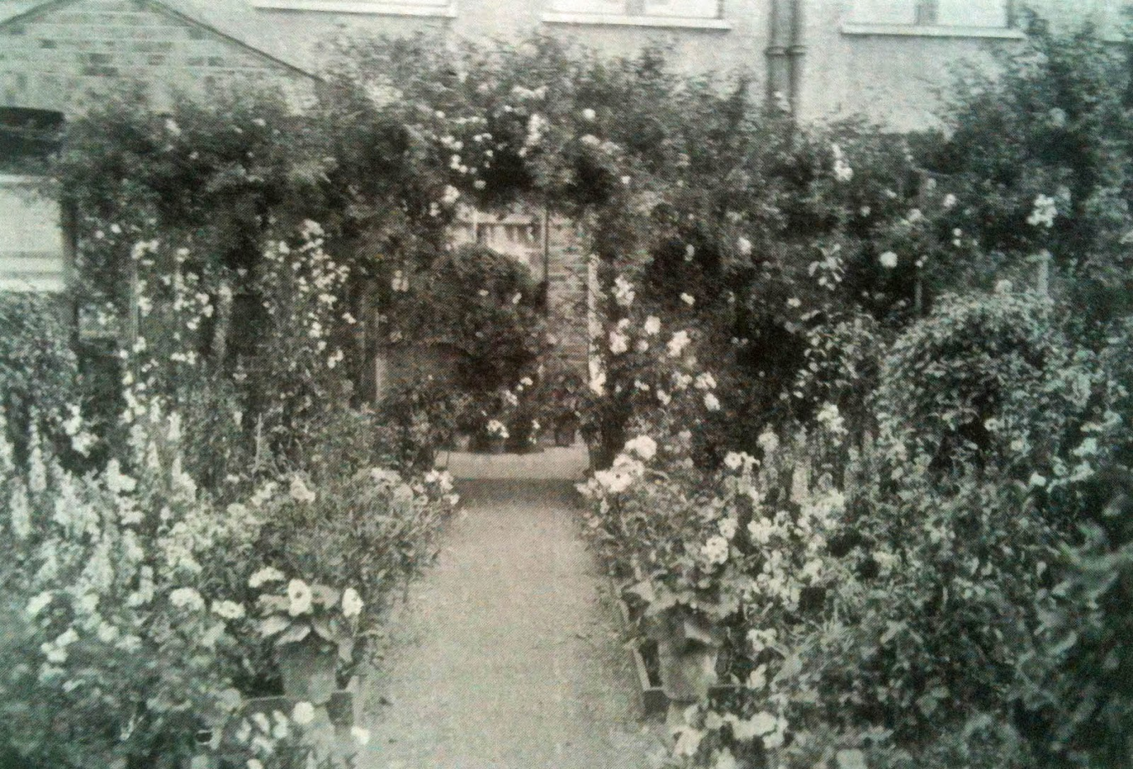 A suburban front garden from before TV.