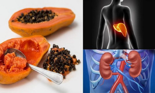 Effective Way of Eating Papaya Seed for Detoxification of the Liver, Kidney, and Even Fight Against CANCER!