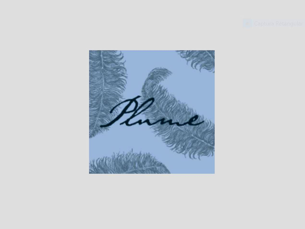 Plume: Fine Dining in Washington DC | Tasting Bites