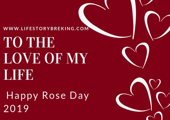 To the love of my life… Happy Rose Day.