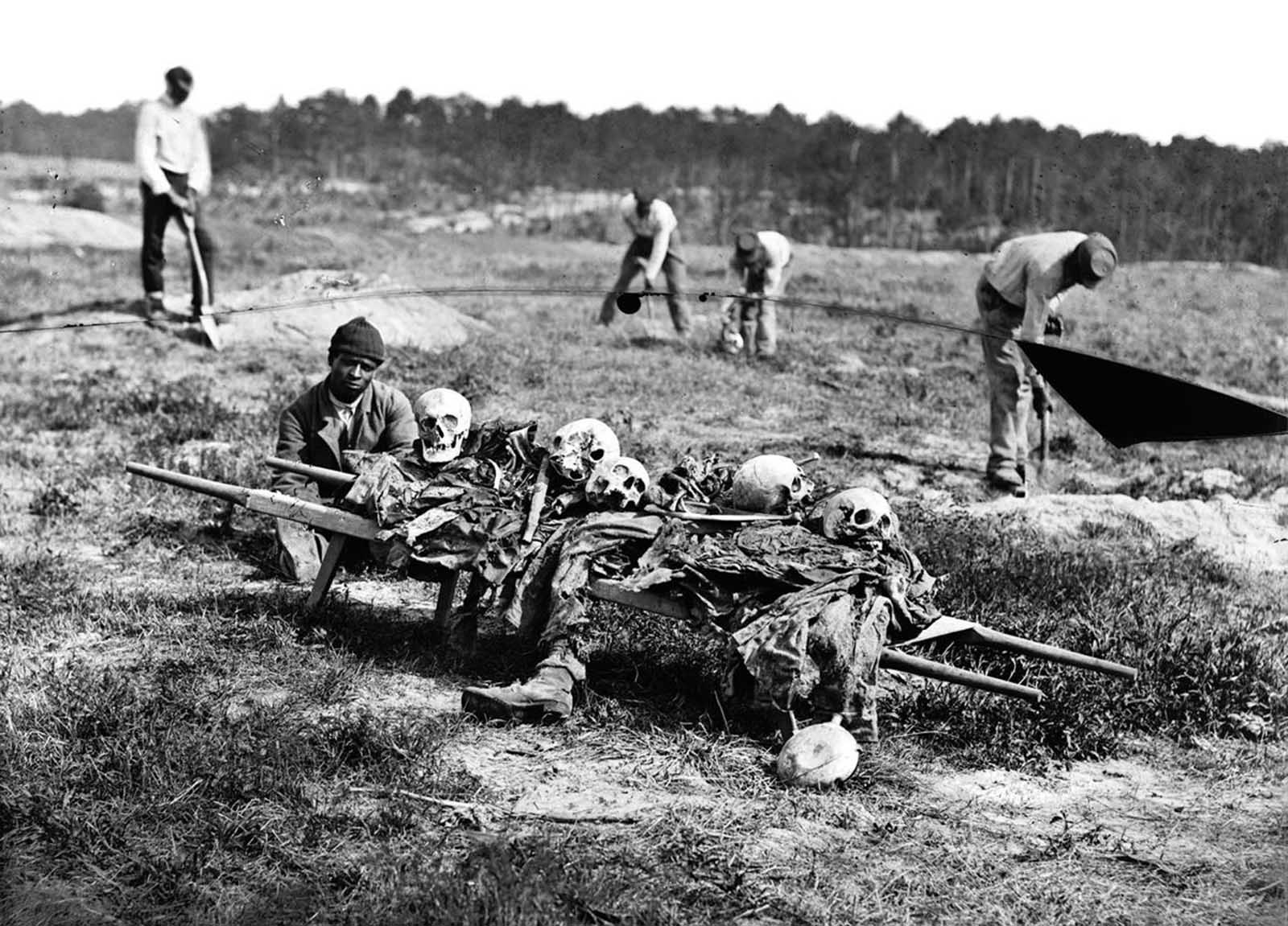 African Americans collect the remains of soldiers killed in battle near Cold Harbor, Virginia, in April of 1865.