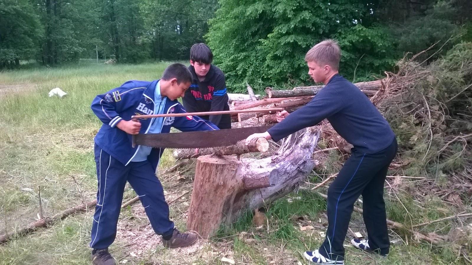 Картинка пилить дрова