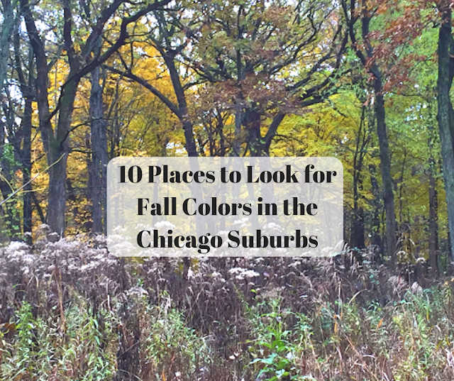 10 Places to Look for Fall Colors in the Chicago Suburbs