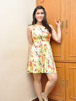Jakkanna fame Mannara Chopra photos gallery-cover-photo