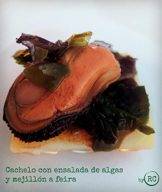 CACHELO-CON-ENSALADA-DE-ALGAS-Y-MEJILLÓN-A-FEIRA-INSPIRADO-EN-YAYO-DAPORTA-BY-RECURSOS-CULINARIOS