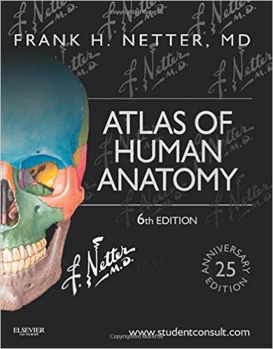 Download free netter's anatomy coloring book updated edition 2e.