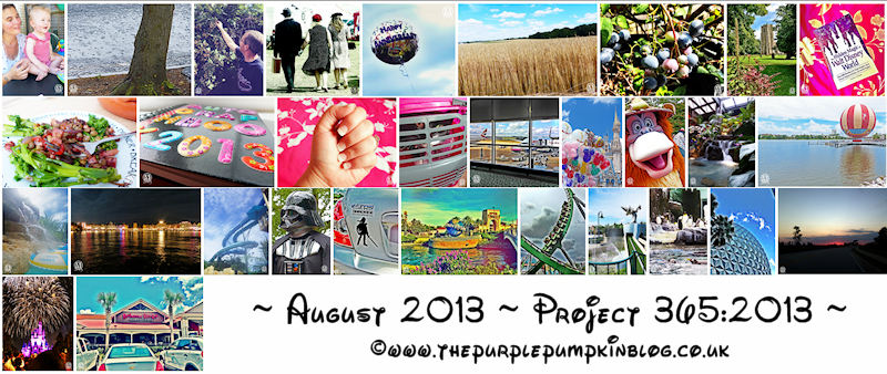 Project 365:2013 – August Round-Up