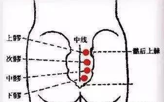 痛經、宮寒、婦科炎症、皺紋......艾灸調理婦科疾病常用穴位!(失眠、便秘)