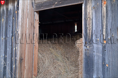 Заброшенный хутор в Налибокской пуще. Внутри сарая с сеном