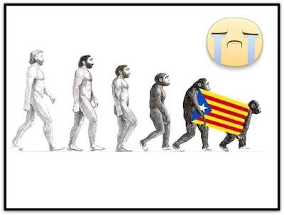 Evolución del catalanista según Darwin