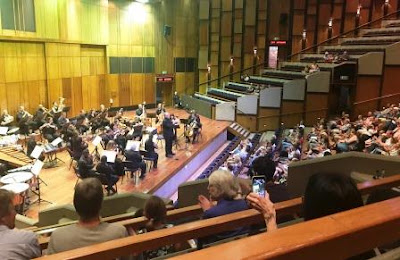 "Johannesburg Festival Orchestra performing a family concert ""Heroes and Villains"""