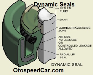 Difference and Similarity Between Static Seals and  Dynamic Seals
