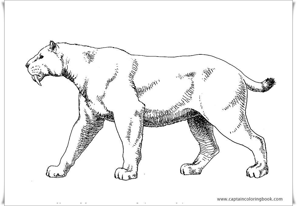 ice age 4 continental drift coloring pages – lifewiththepeppers.com   678x978