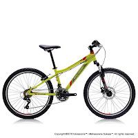 Sepeda Gunung Remaja Polygon Relic 24 Inci