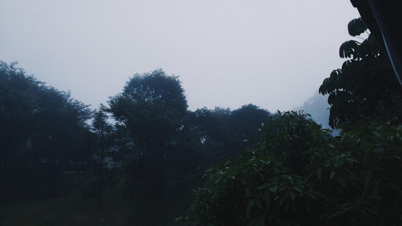 projeto fotográfico fotologia de julho no tema quem somos nós e selfies, tem metal e muita comida silent hill neblina