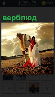 На бескрайнем поле стоит верблюд и рядом погонщик весь завернутый в одежду, одни глаза видны