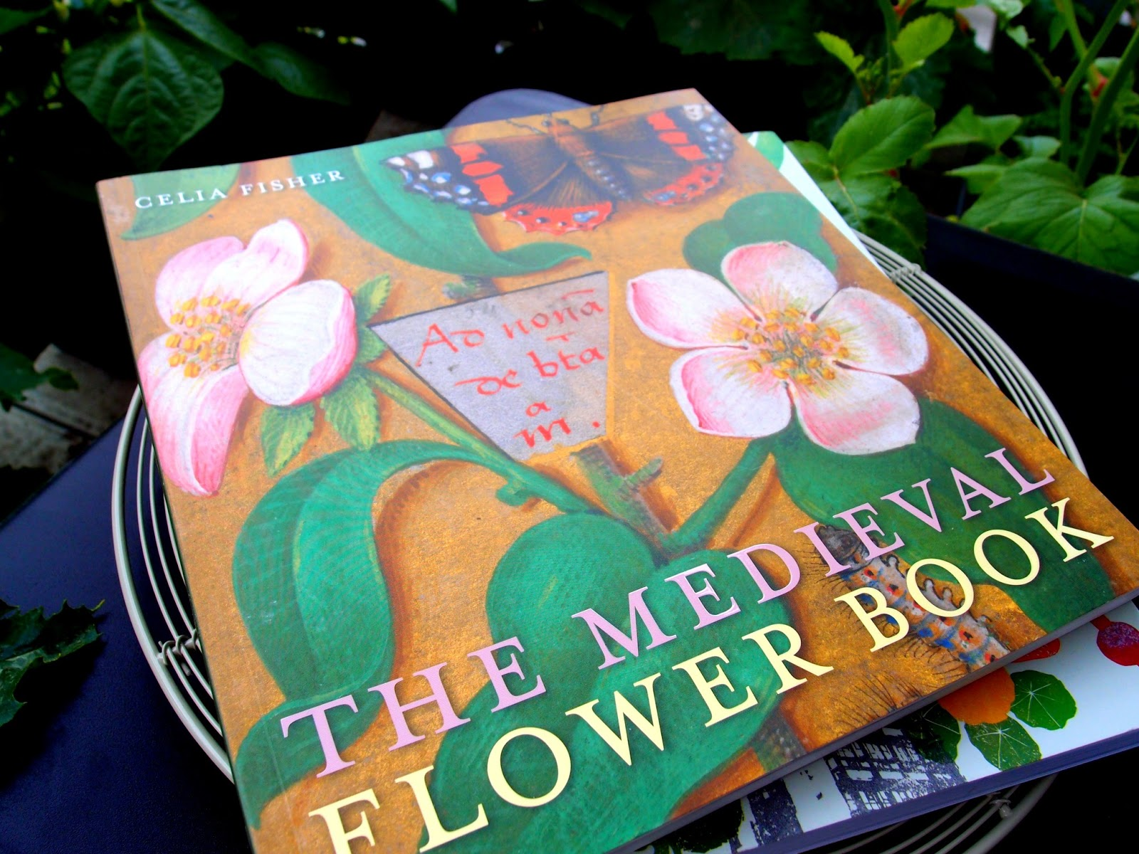 Some time ago I purchased The Medieval Flower Book. In the first instance  again the lovely illustrations caught my eye but once I started reading the  book I ...
