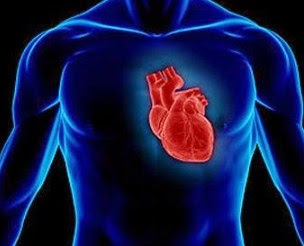 9 Makanan yang Baik untuk Jantung, Alami Tanpa Efek Samping