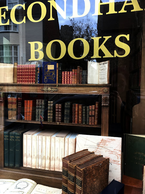 Second Hand Book Shop in Lewes