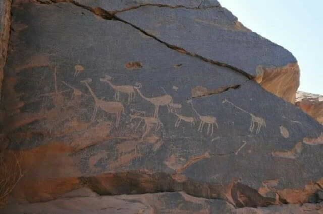 Predynastic rock art discovered south of Aswan