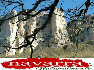 213 Cueva de San Prudencio Sierra Lókiz Monumento Pétreo Singular    www.casaruralurbasa.com  La Cueva de los Buitres de San  Prudencio, está  ubicada en  Navarra, más  concretamente, en la Comarca de Urbasa Estella, en el Valle de Metauten.