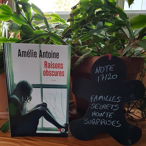 Raisons obscures de Amélie Antoine