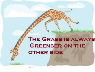 Meaning and sentence of the Idiom'The grass is always greener on the other side'
