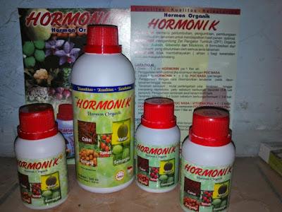 Hormon untuk Tanaman