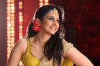 Rakul Preet Winner Stills-thumbnail-cover