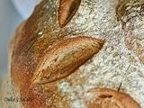 Pan de Hogaza con Masa Madre
