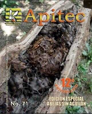 https://issuu.com/marcoacuna/docs/apitec71