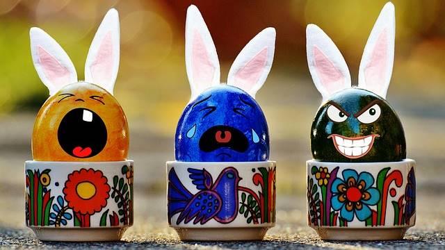 Ovos com cara de coelho